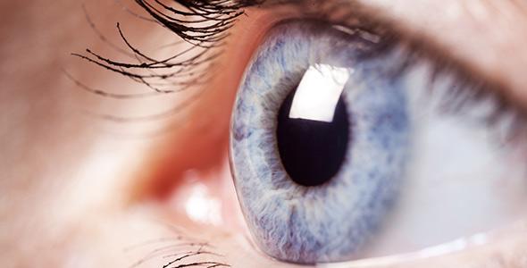 cornea-eye-specialist